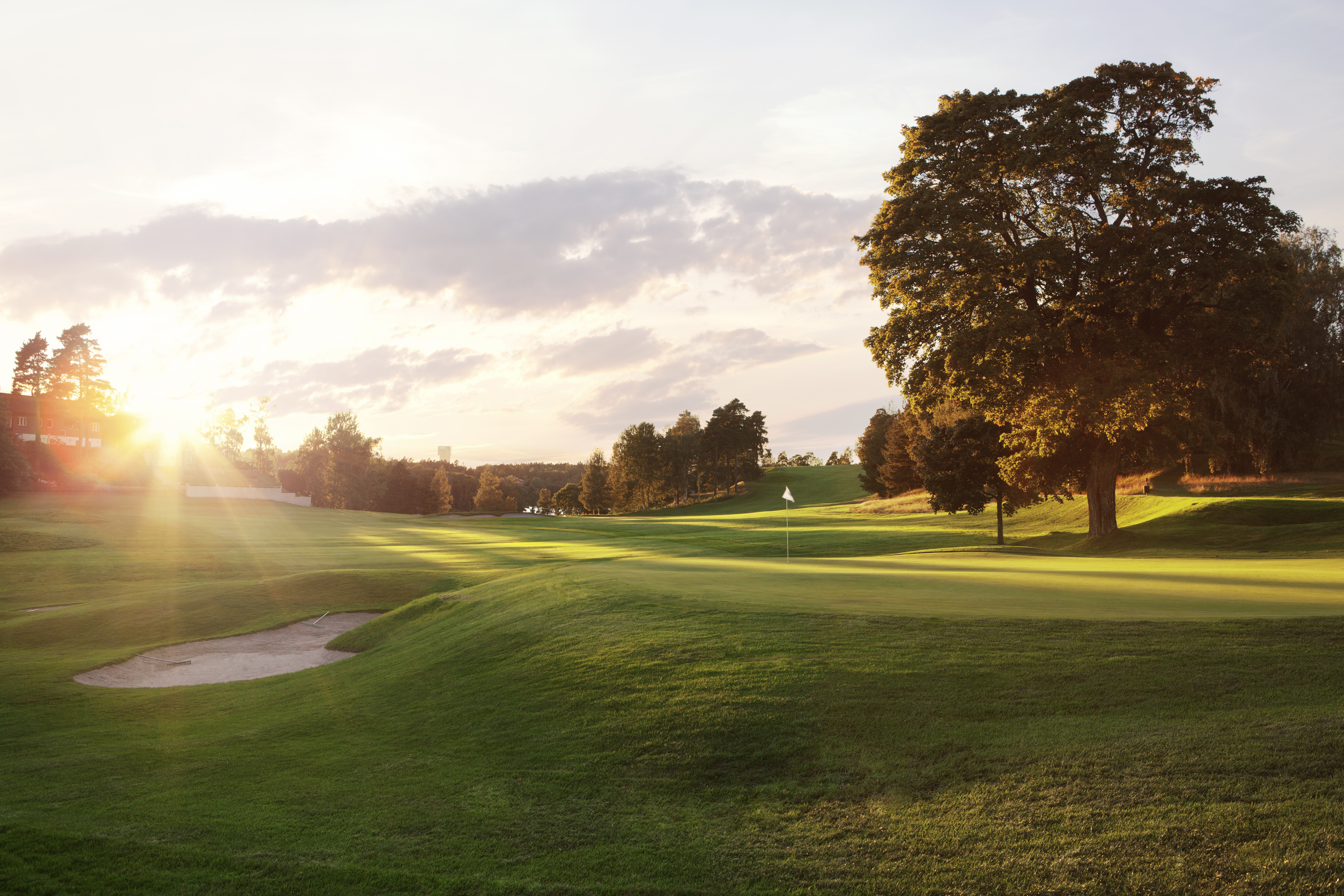 Golfbanan i solnedgången